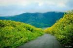 Đà Lạt – Đường Hầm Điêu Khắc Đất Sét
