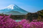 Tour Nhật Bản l Tokyo - Kawaguchi - Phú Sỹ - Yokohama