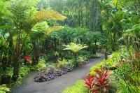 Du lịch Hawaii