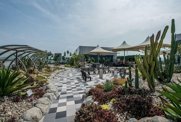 Du khách ví sân bay Singapore như công viên Disneyland