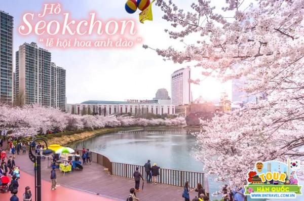 Đi hồ Seokchon tham gia lễ hội hoa anh đào đầy sắc màu