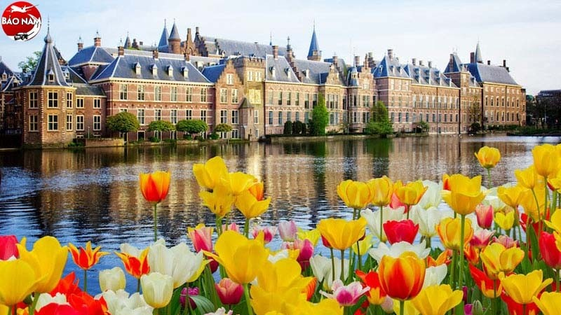 Vé Máy Bay Giá Rẻ Đi Hà Lan -4